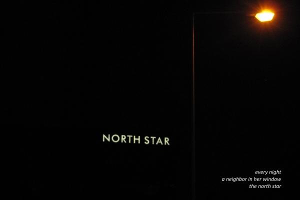 dainius-dirgela-north-star8918029D-C799-9800-1928-25E65BBFEB0B.jpg