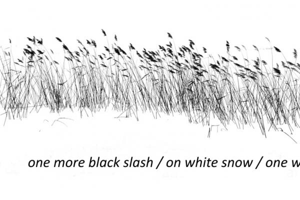 dainius-dirgela-one-more-black-slash3C302DE5-9804-42BD-EC89-46673CE551FE.jpg
